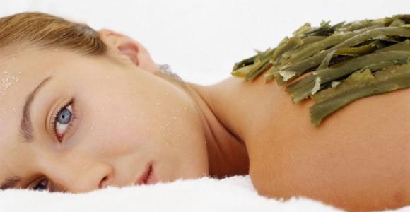 Обертывания с морской капустой для похудения