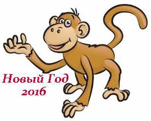 monkey-16